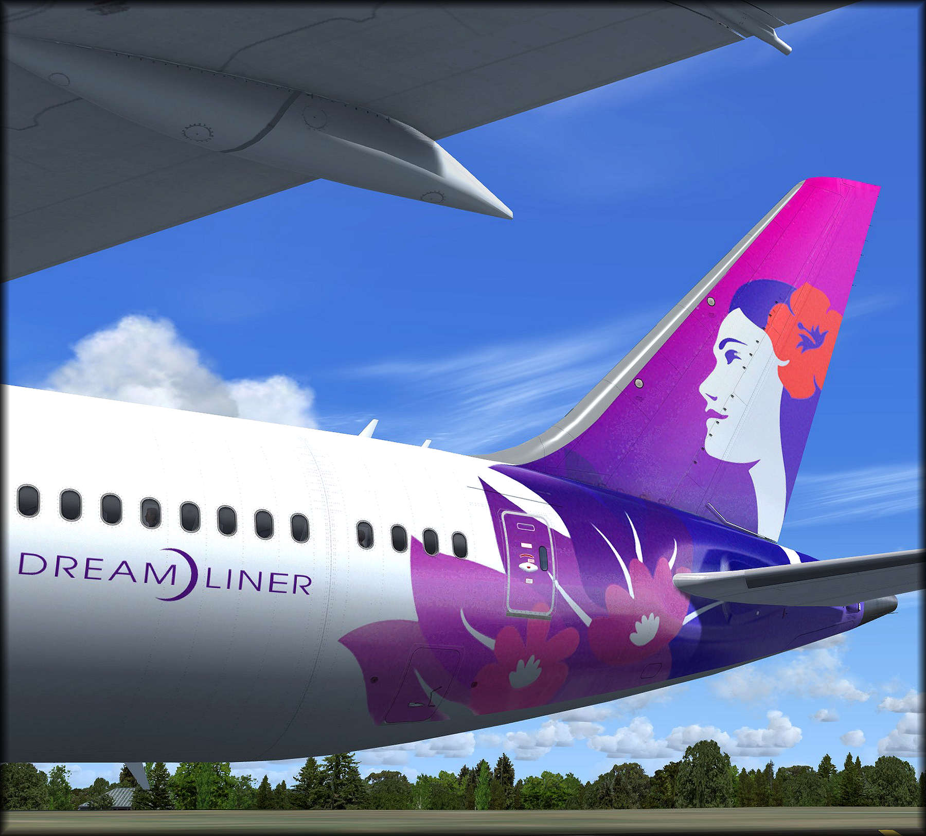 787 hawaiian new livery - QualityWings Simulations Forum - Page 1